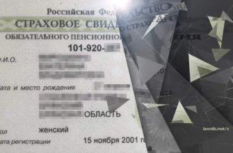 СНИЛС в отменили в России